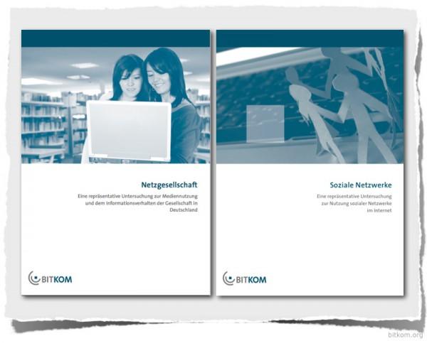 Netzgesellschaft / Soziale Netzwerke (Bitkom Studien)