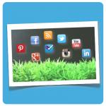 Social Web Wiese :: Illustration (Foto: DoSchu.Com)