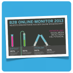 B2B Online Monitor 2013 :: illustration