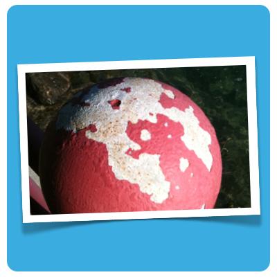 globus doschu